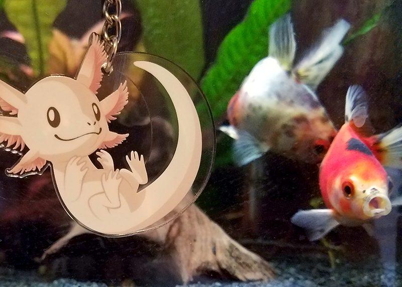 Goldfish & keychain